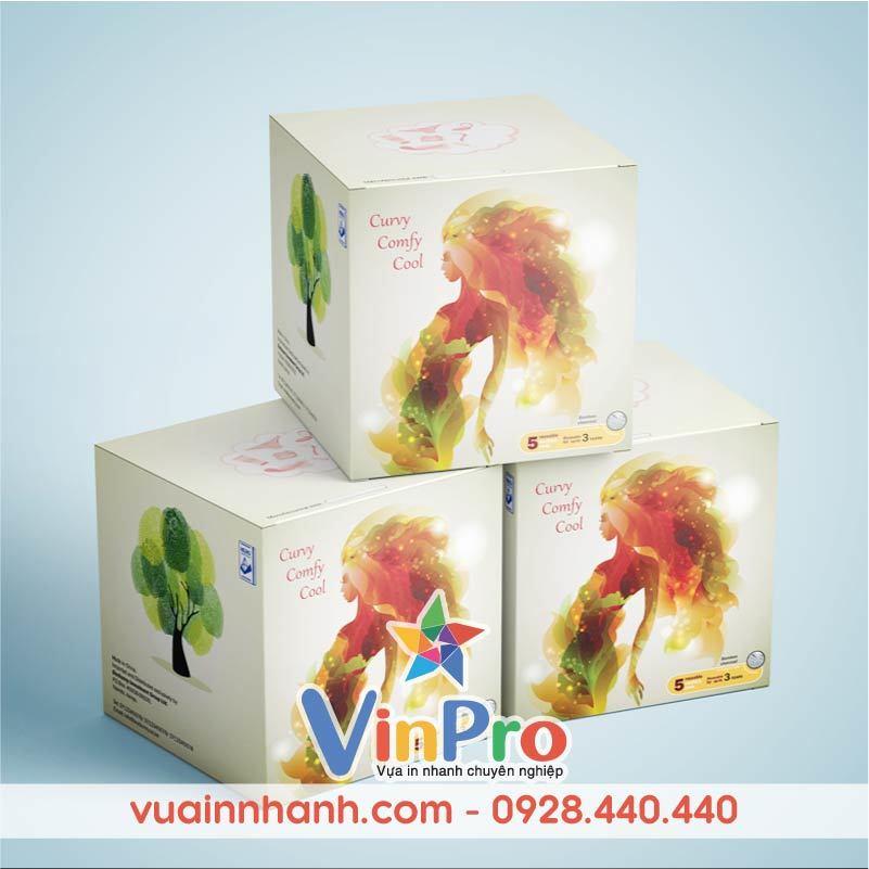 In bao bì giấy đẹp tại VinPro
