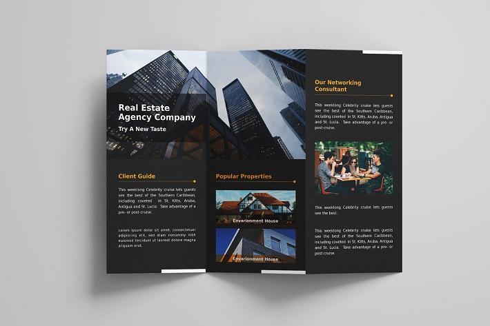 in brochure (7)