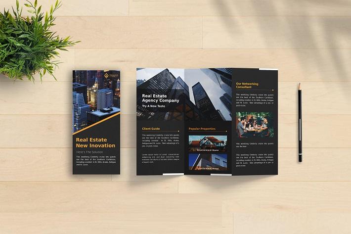 in brochure (8)